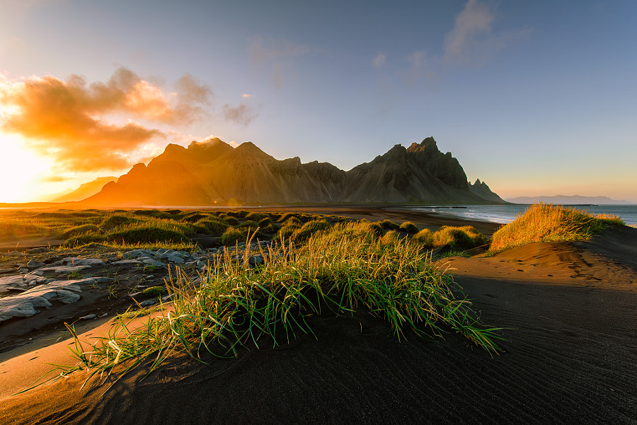 Lights of Vestrahorn