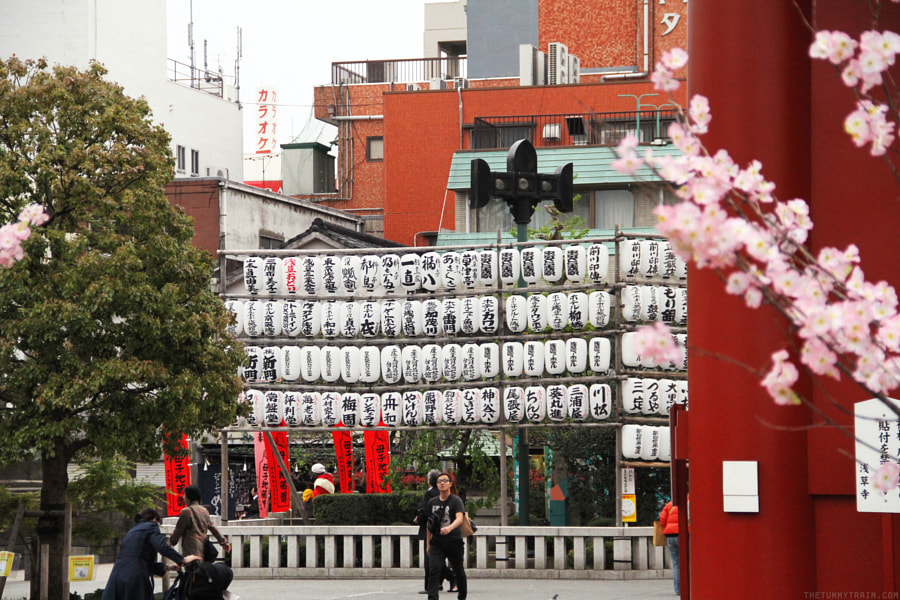 396fdca7cbb7f691ffad5d3fd447e4b3 - Japan Travel Blog April 2015: Sensoji Temple in Asakusa