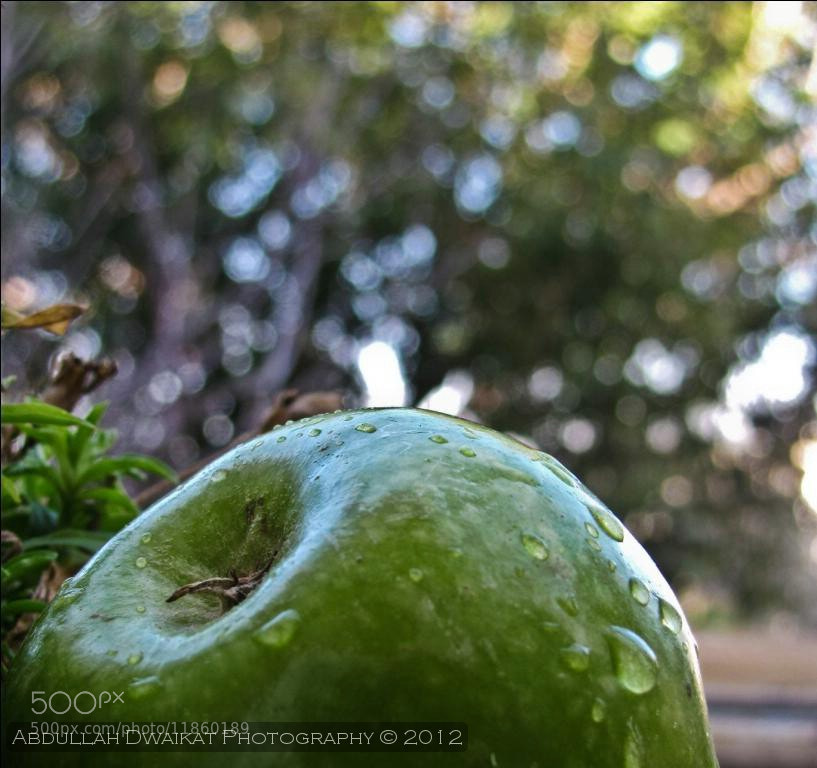 Photograph Apples  by Abdullah Dwaikat on 500px