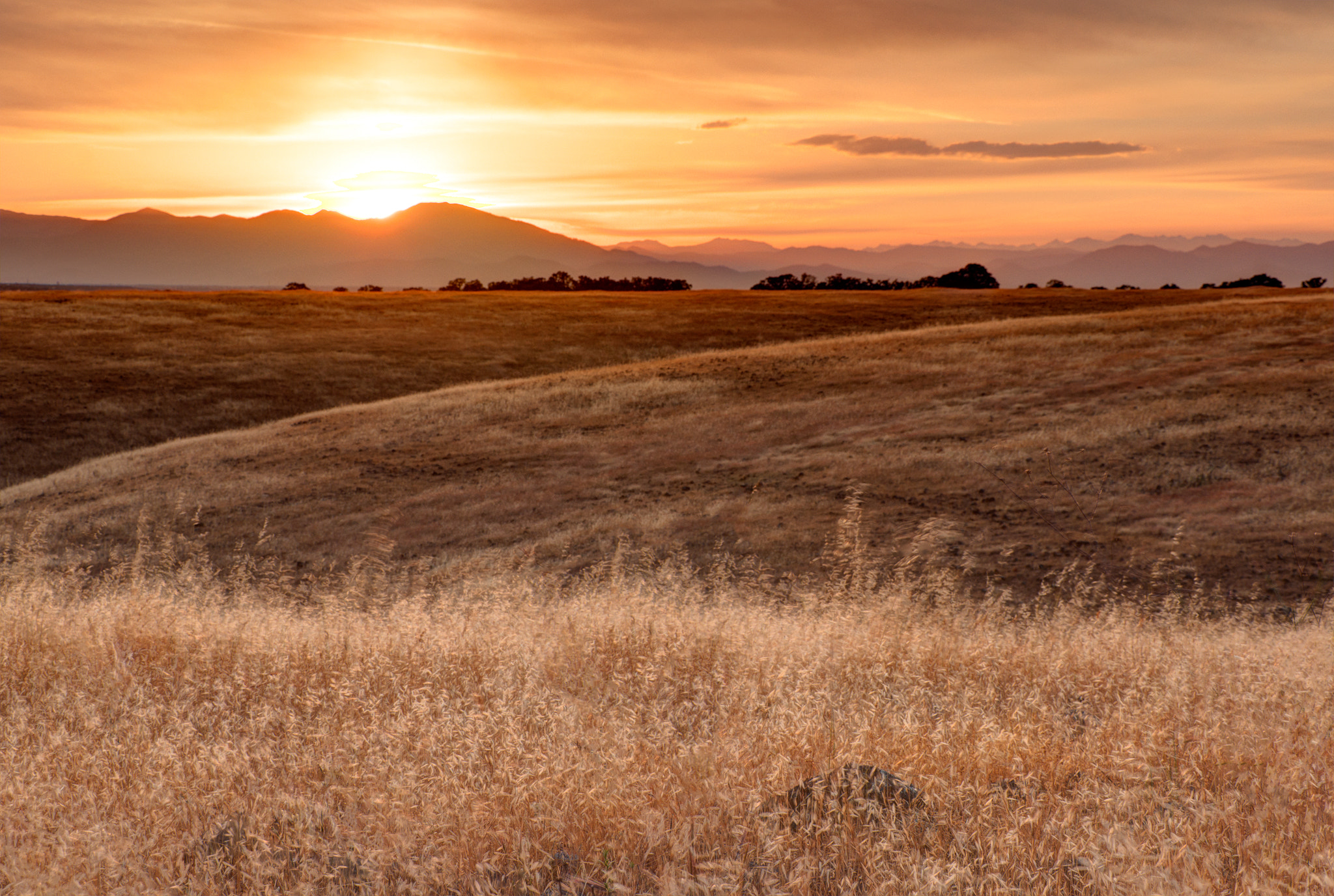 Photograph Sacramento Valley (Endless Hope) by Eric Leslie on 500px