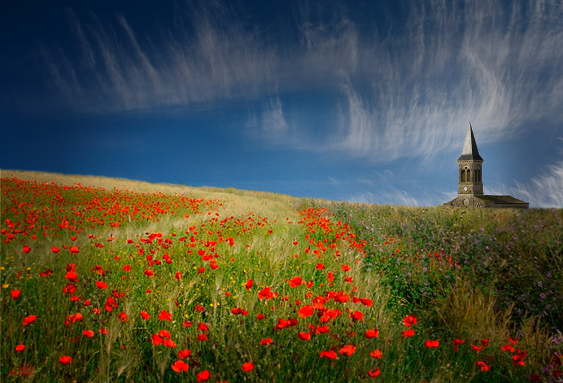 Photograph egllise et coquelicots by André TORRES on 500px