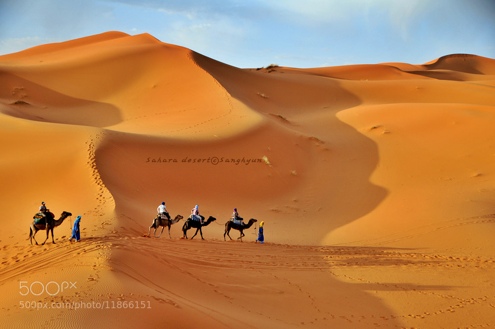 Photograph Sahara Desert by Sanghyun Baik on 500px