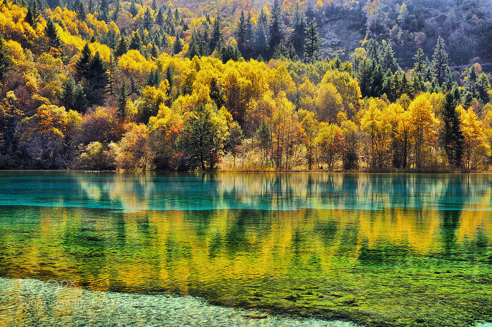 Photograph Multicolor reflection by Jumrus Leartcharoenyong on 500px