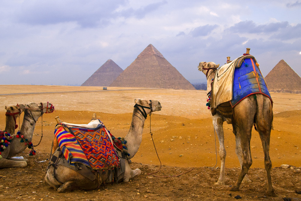 Photograph In Cairo by Hai Thinh on 500px