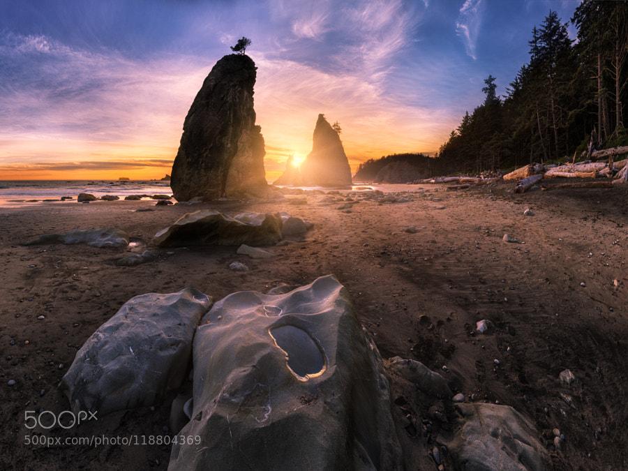 Low tide on Split Rocks