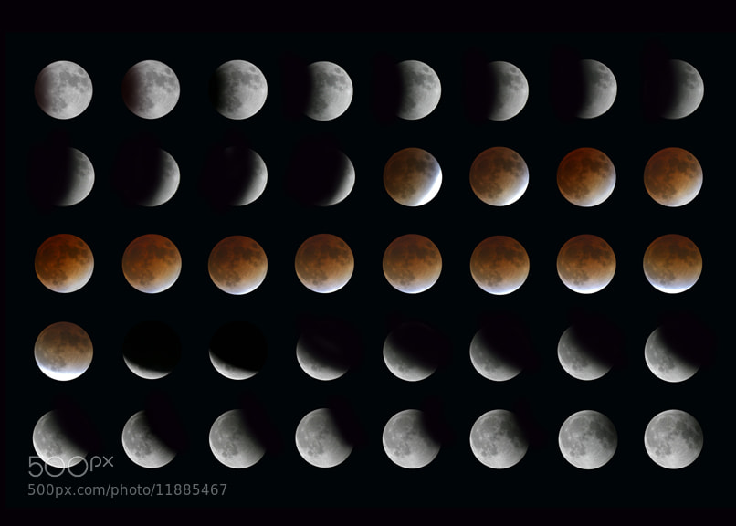 Photograph Lunar Eclipse Phases by Larry Landolfi on 500px