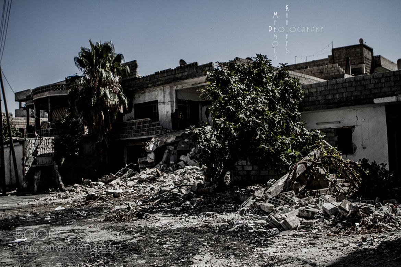 Photograph Death & Life !! by Mahmoud Khateeb on 500px