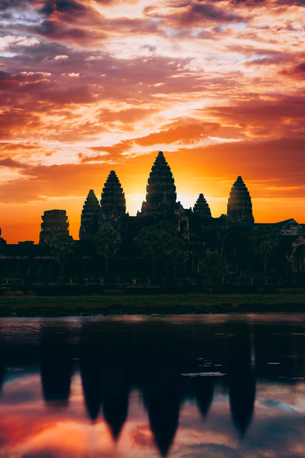Angkor Surprise by Peter Stewart on 500px.com