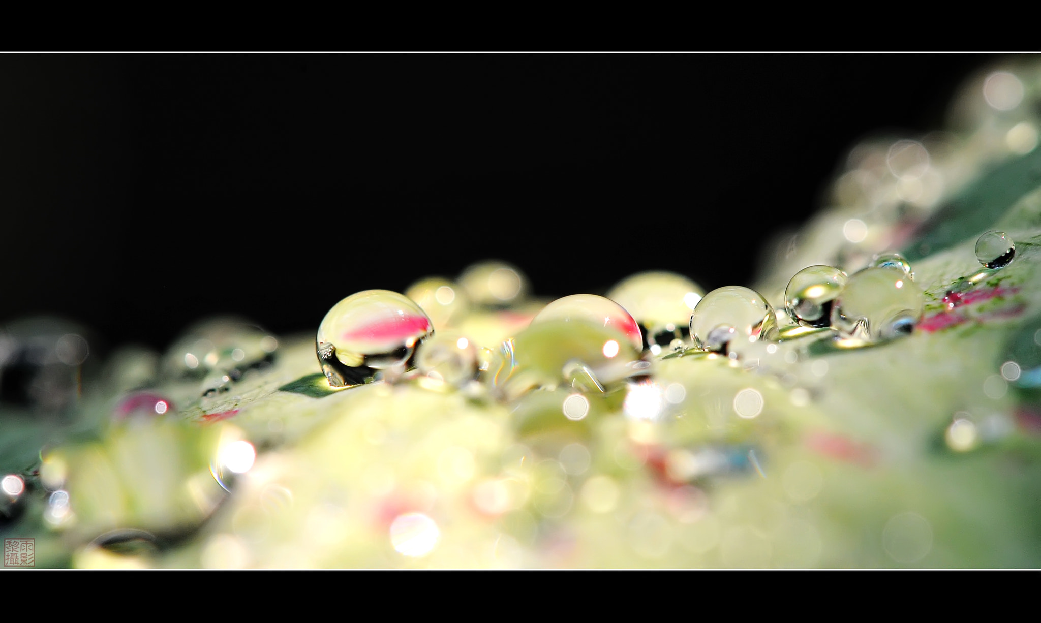 Photograph Glitter by Vu Le on 500px