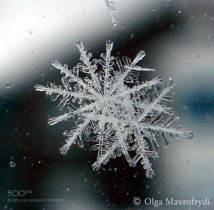 Photograph rare octagon snowflake by Olga Mavrofrydi on 500px