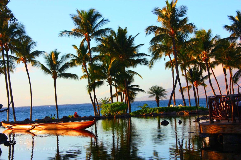 Photograph Maui by Unnati Shah on 500px