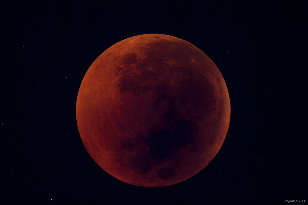 Photograph Lunar Eclipse by Greg Gibbs on 500px