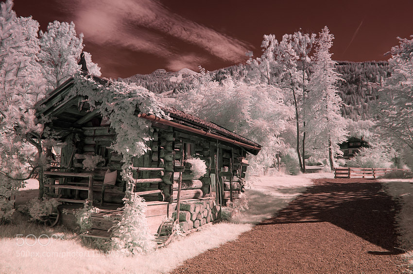 Photograph IR by ---Jan --- on 500px