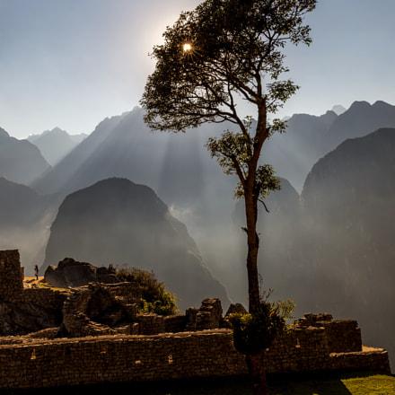 Machu Picchu inhabitant