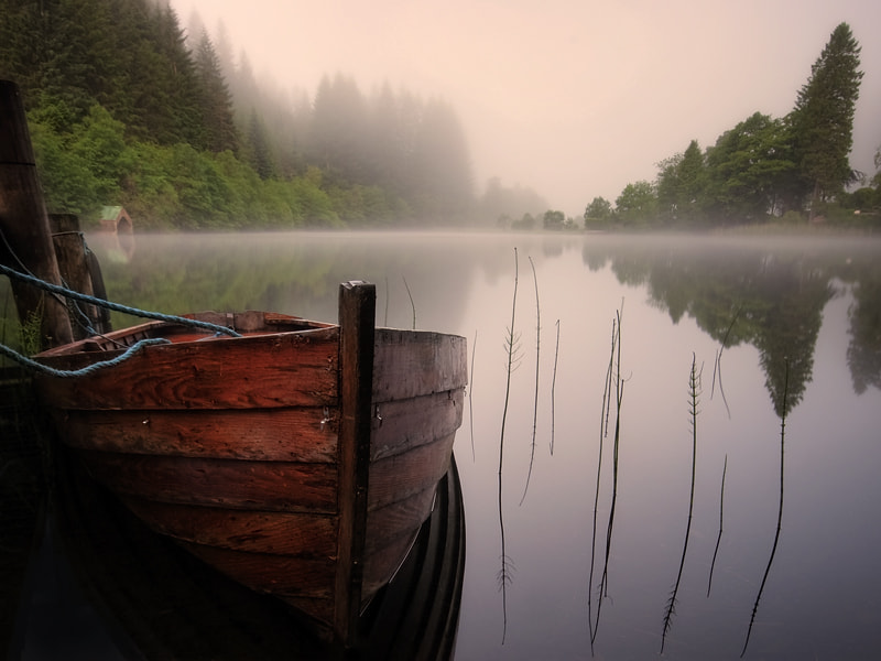 Photograph THe early bird... gets the mist... by David Mould on 500px