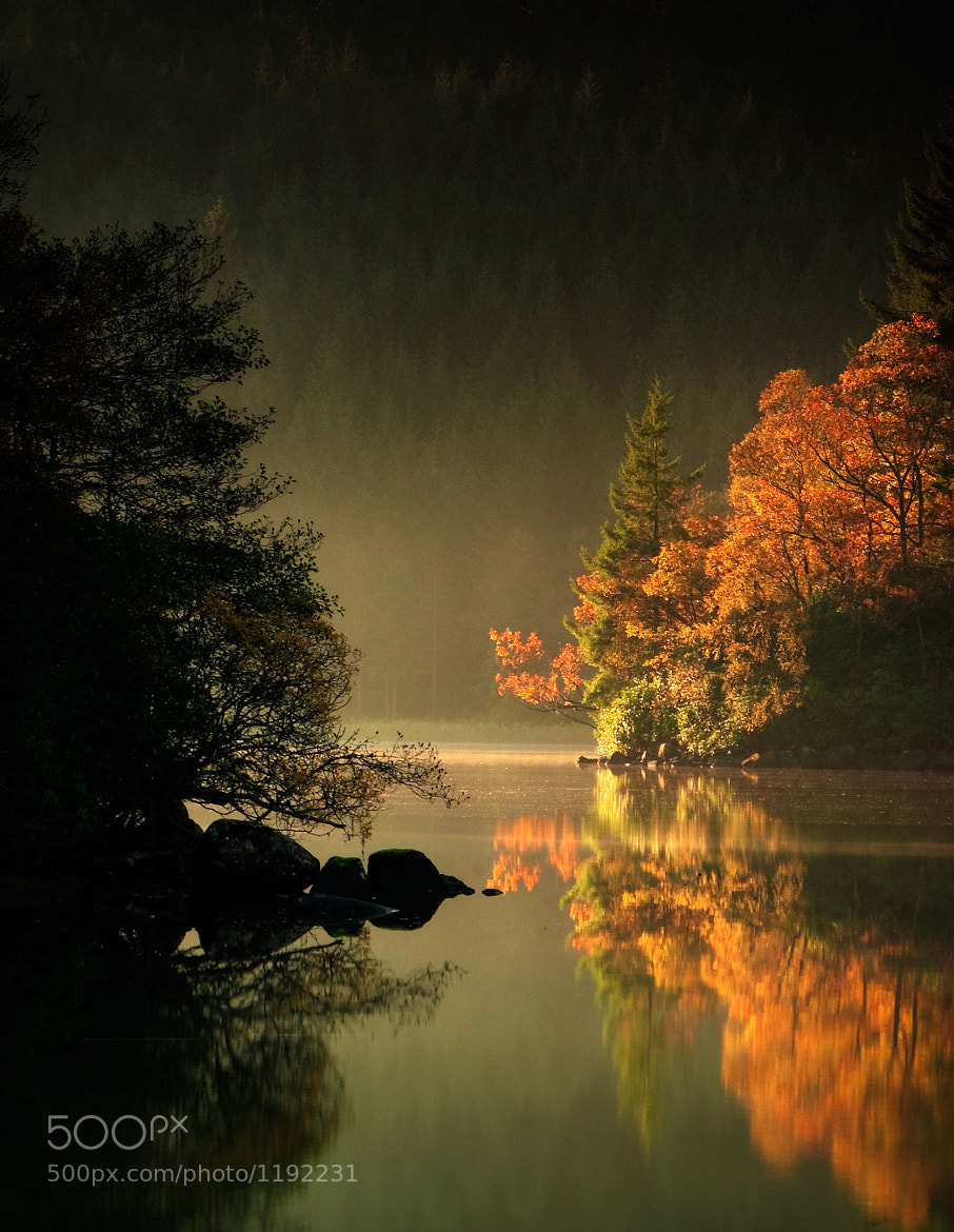 Photograph Loch Ard Autumn Light by David Mould on 500px