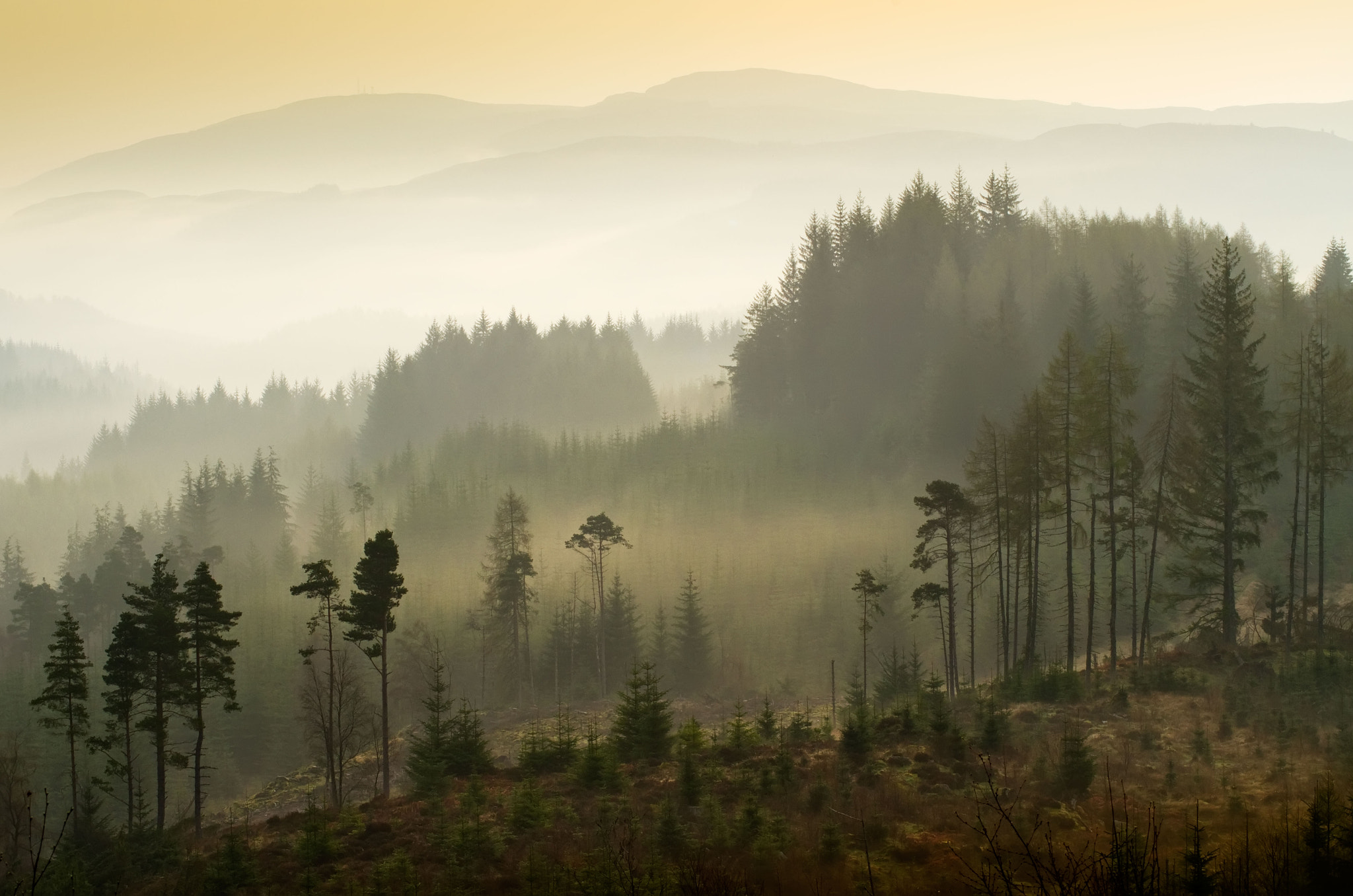 Photograph Dukes Pass, Trossachs by David Mould on 500px