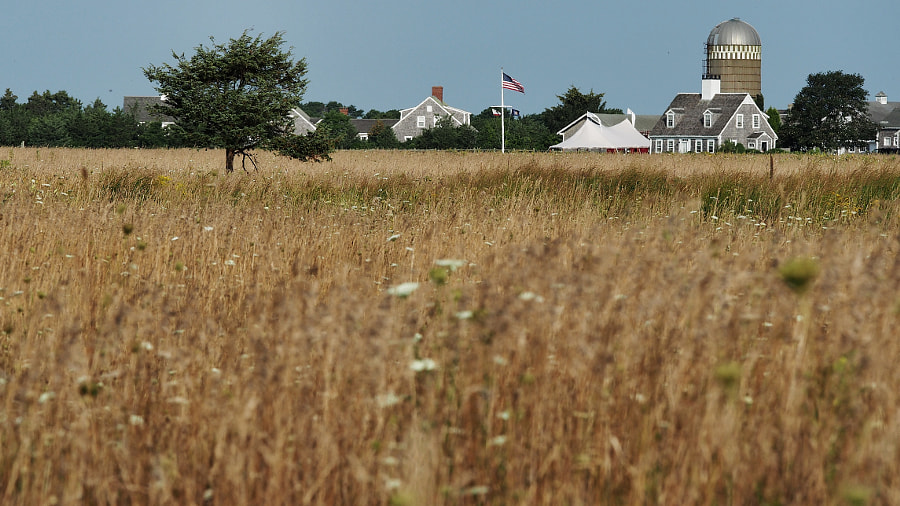 Photograph Herring Creek Farm, Martha's Vineyard (1/2) by Nancy Lundebjerg on 500px