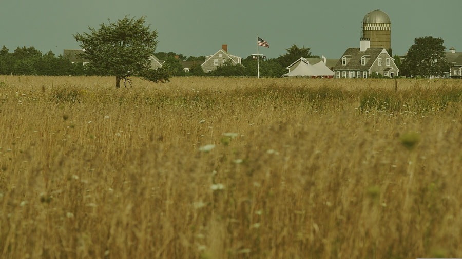 Photograph Herring Creek Farm, Martha's Vineyard (2/2) by Nancy Lundebjerg on 500px