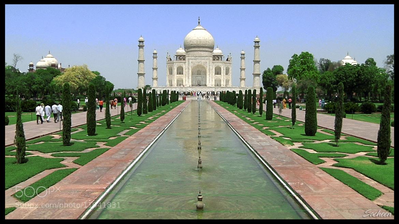 Photograph Taj Mahal by Sacheen Vaidya on 500px
