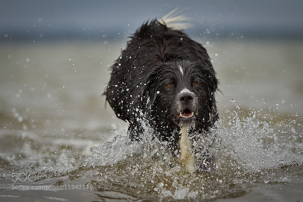 Photograph open water ... by Mathias Ahrens on 500px