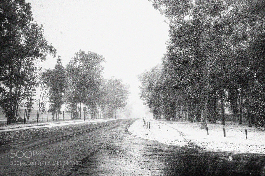 Photograph Snow storm by Robbie Aspeling on 500px