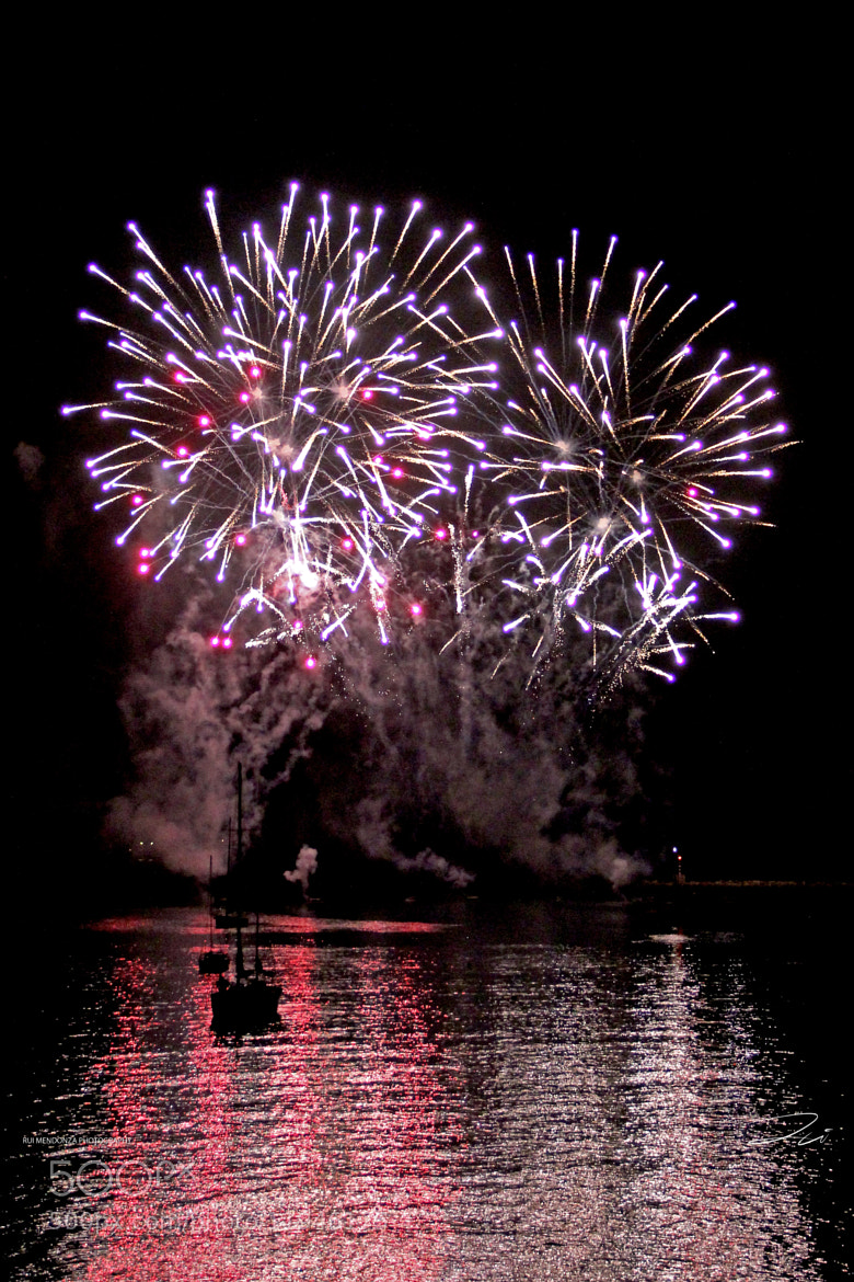 Photograph Fireworks (1) by Rui Mendonza on 500px