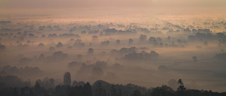 Morning Mist by Paul Clark on 500px.com