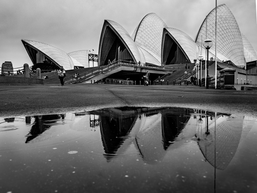 Photograph Sydney Opera House Reflection by Travis Chau on 500px
