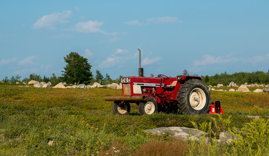 Photograph Tractor on the blueberry fields by Adam Morris on 500px