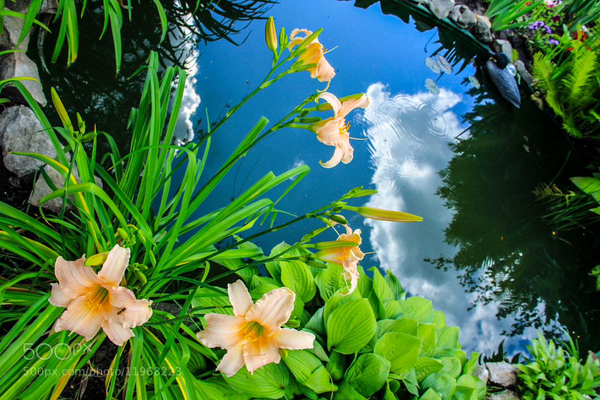 Photograph Sky in the water by Julia Sidelnikova on 500px