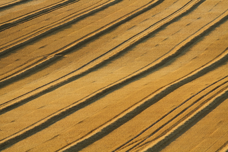 Photograph Harvest Lines by Luke Massey on 500px