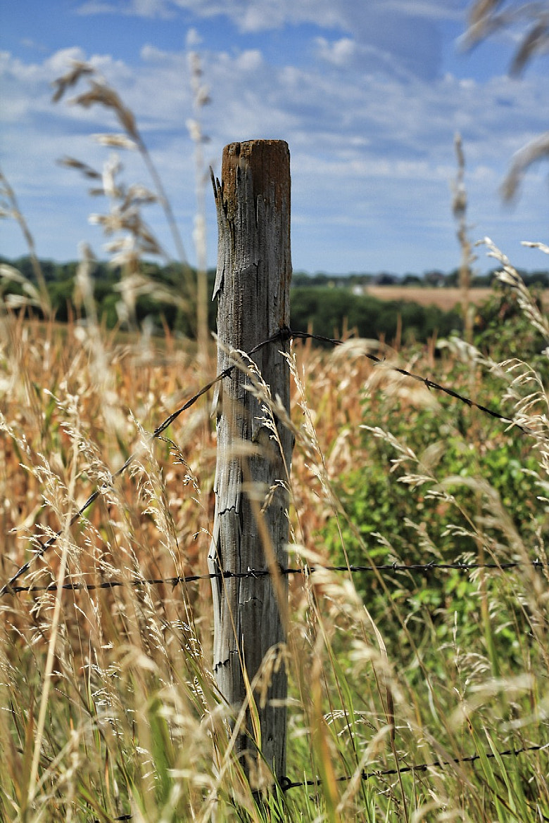 Photograph fence post with a twist by Parker Mitchell on 500px