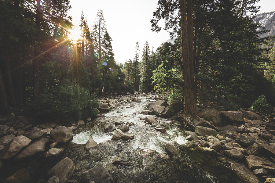Yosemite by Rob Sese on 500px.com