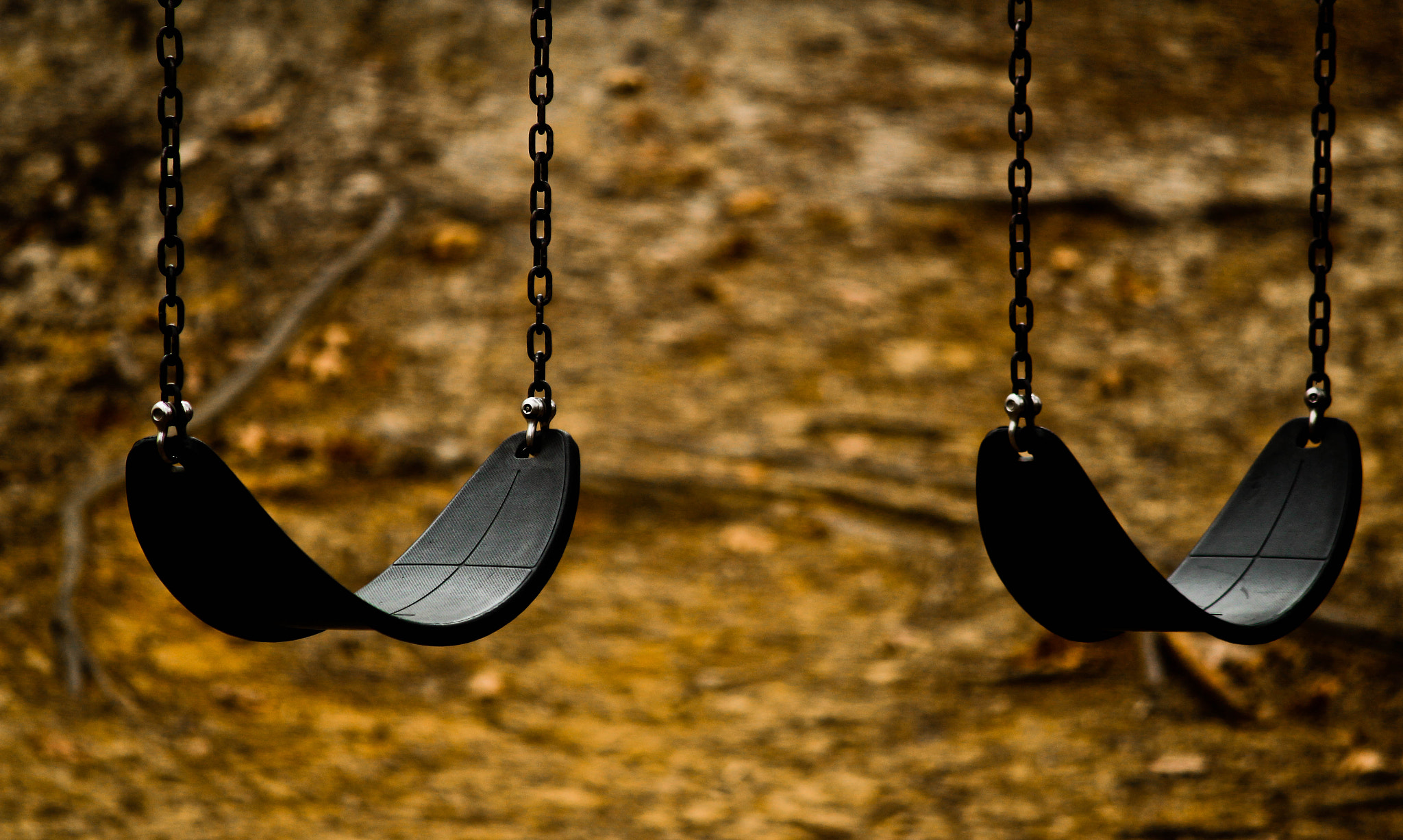 Photograph Swing by Naveen Pal on 500px