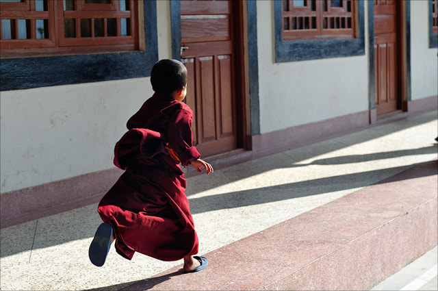 Photograph The Running Monk by saptak ganguly on 500px