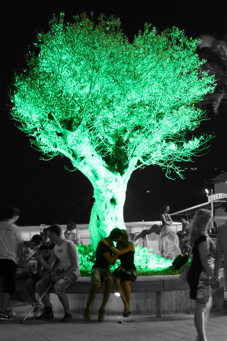 Photograph The tree of love by Ashira (Stefania) on 500px
