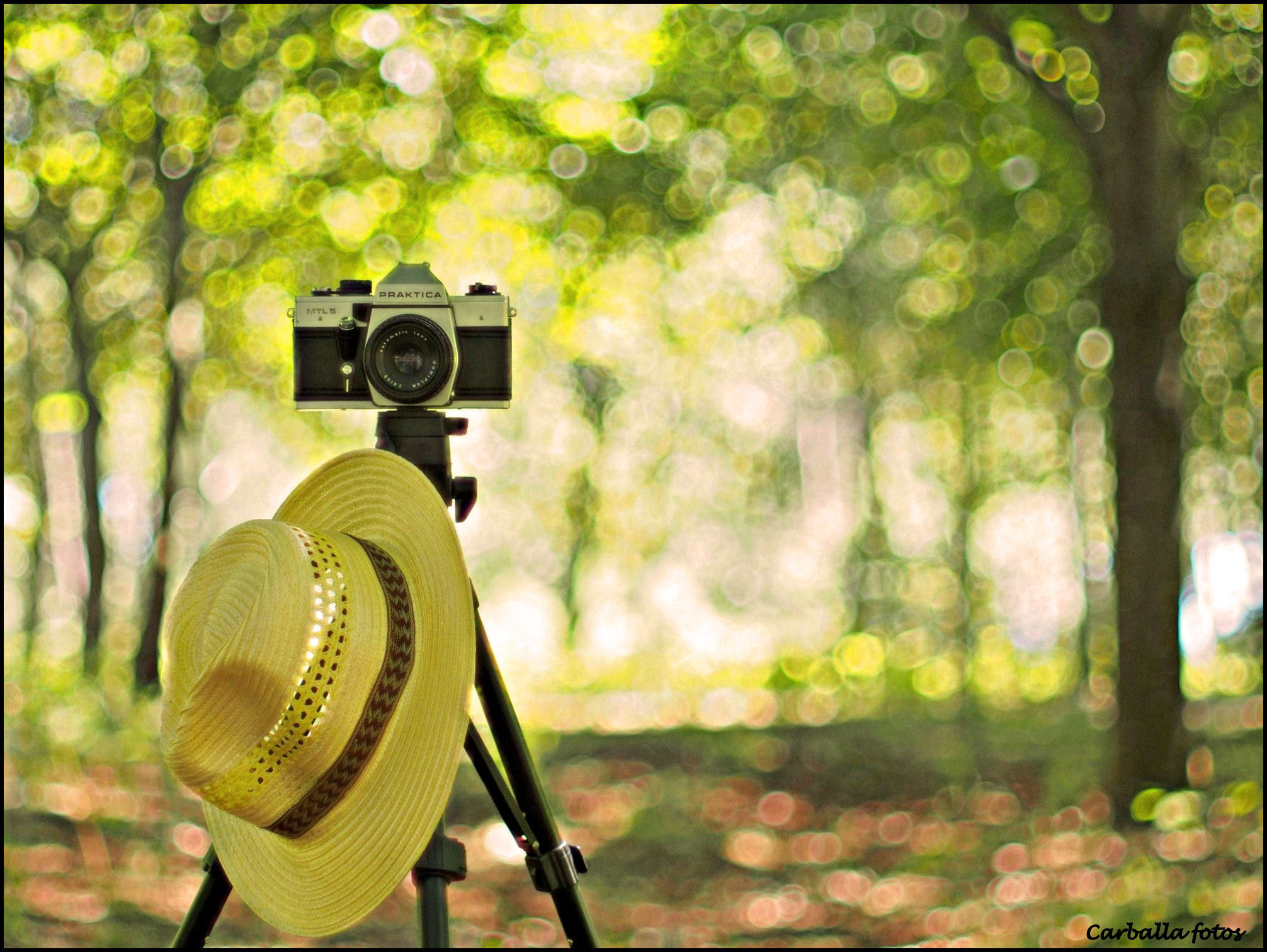 Photograph Summertime by Guillermo  Carballa on 500px