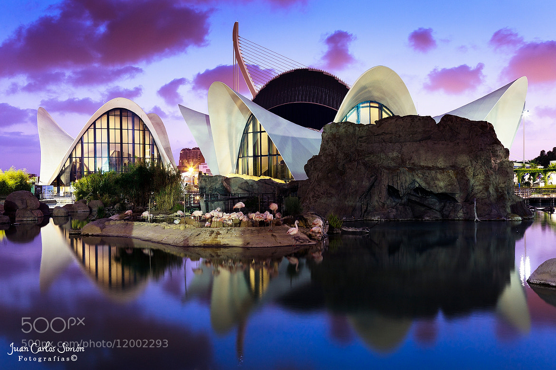 Photograph Cae la noche (Night falls) by Juan Carlos Simón on 500px