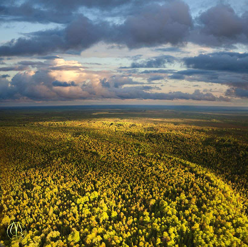 Photograph Evening clouds above forest. by Vladimir Melnikov on 500px