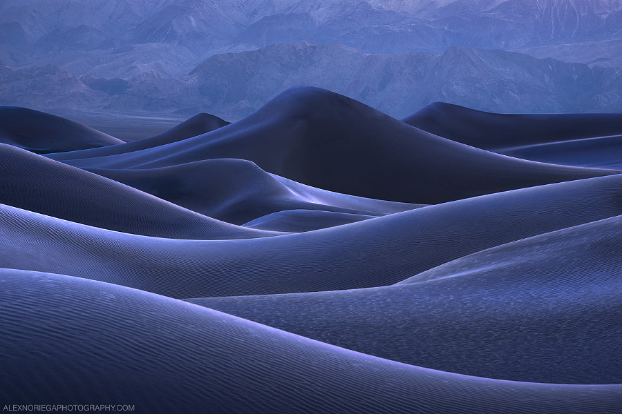 Darkwave by Alex Noriega on 500px.com
