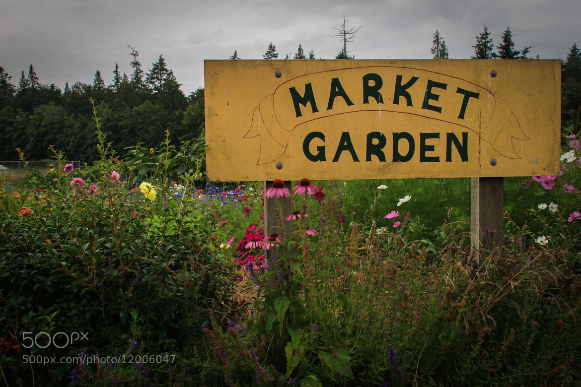 Photograph Market Garden by Joel Sage on 500px