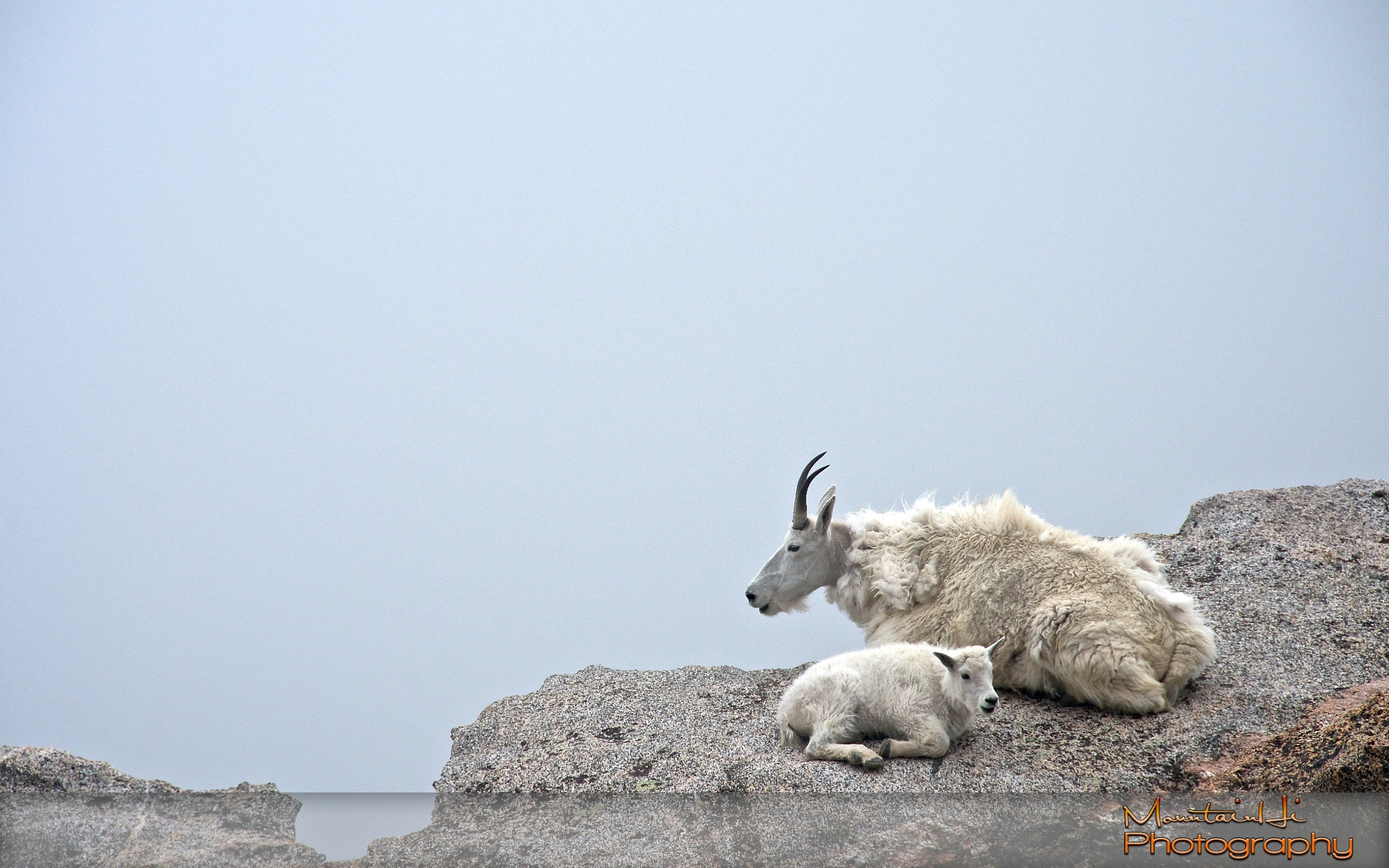 Photograph Living On The Edge by Carl Johnson on 500px