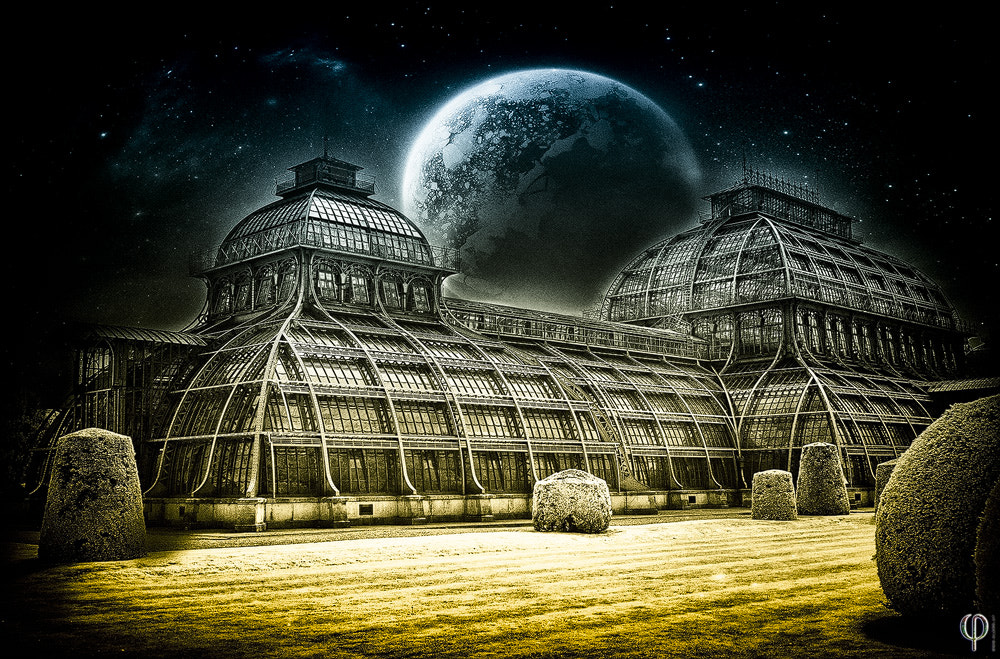 Photograph Palmhouse by Peter K on 500px