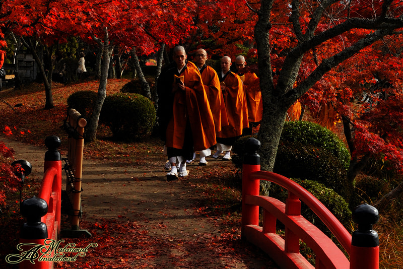 Photograph Monks 0031 by Mahmoud Al-Mahmoud on 500px