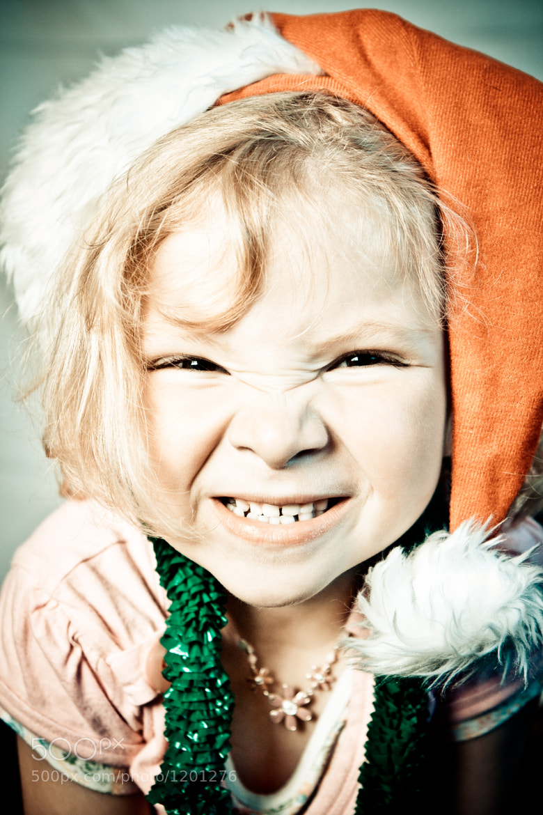 Photograph Christmas Darcy by Michelle Lovegrove on 500px