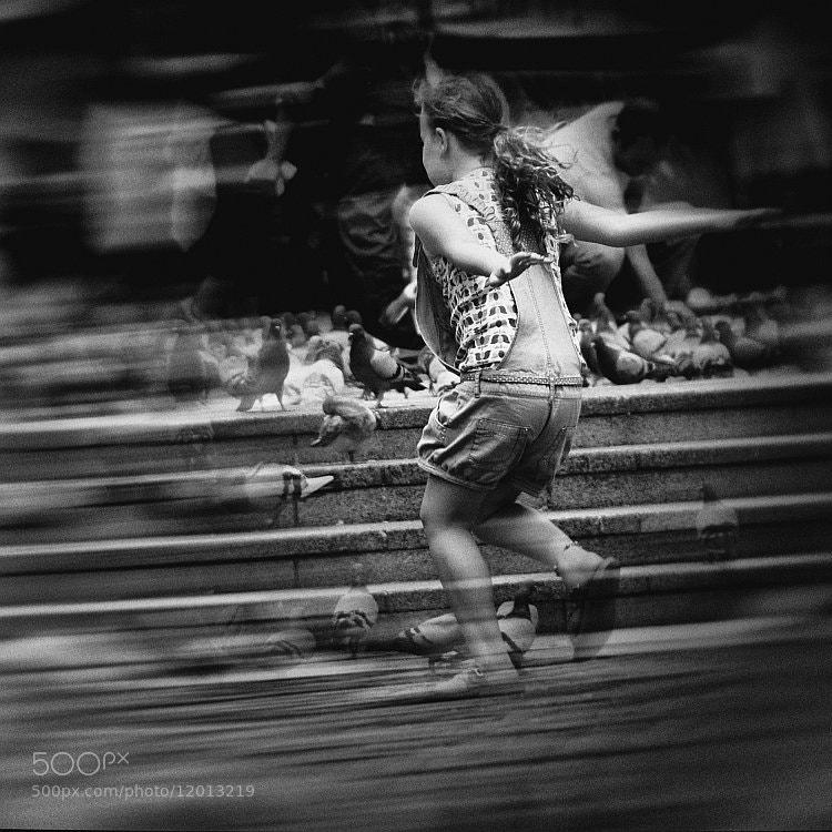 Photograph like a bird by Vladimir Perfanov on 500px