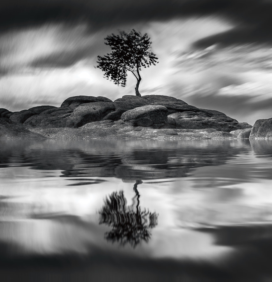Photograph Reflection by The Blurred Lens  on 500px