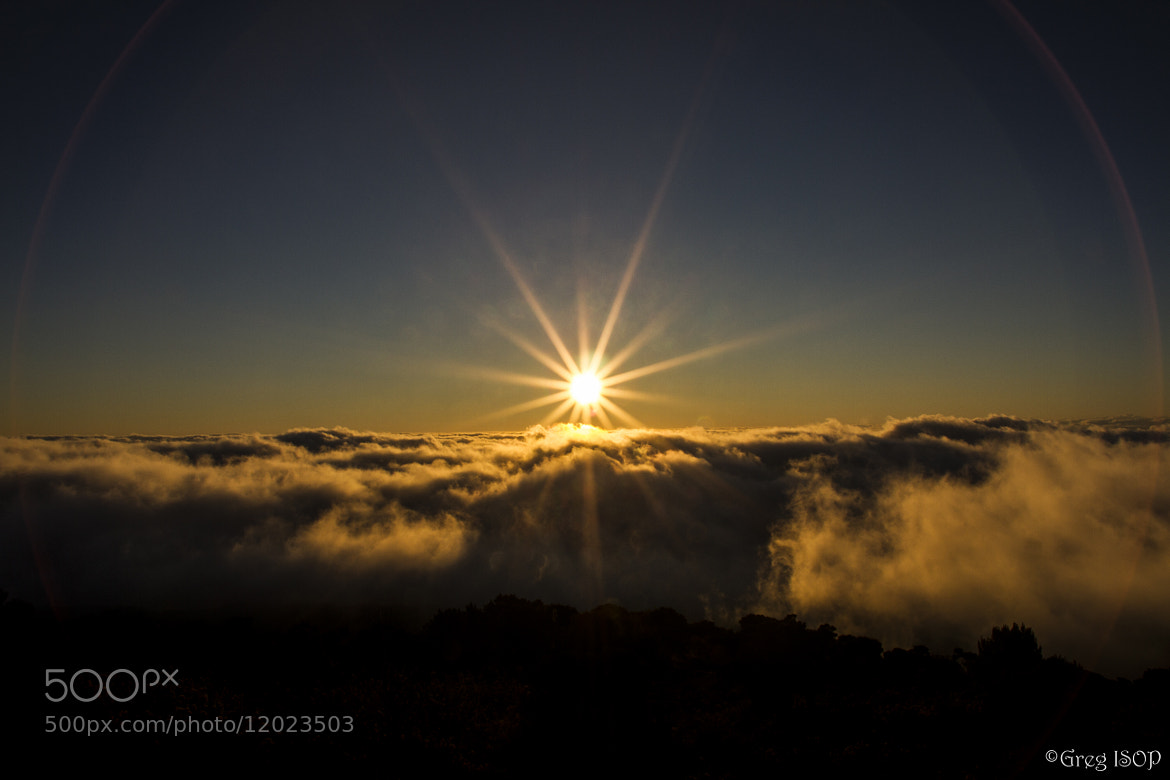 Photograph The sun. by ISOP Greg on 500px