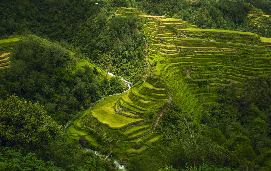 Banaue Rice Terraces of Philippines by Alladin Darryl Ramos on 500px.com